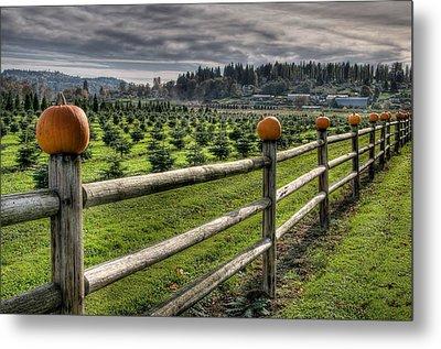 Springhetti Road Pumpkins Metal Print by Spencer McDonald