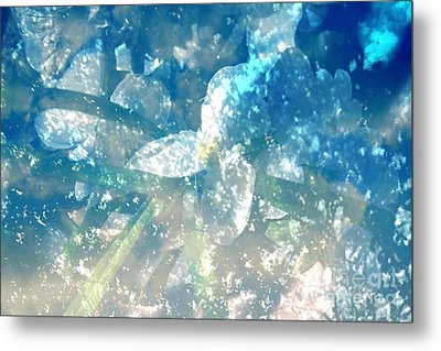 Springled With Du Metal Print by Sherri's Of Palm Springs