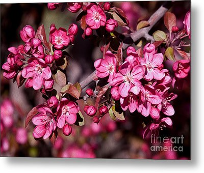 Metal Print featuring the photograph Spring's Arrival by Roselynne Broussard
