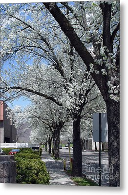 Metal Print featuring the photograph Springtime Corning Ny 2 by Tom Doud
