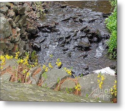 Springtime Creek Metal Print by Christina Verdgeline