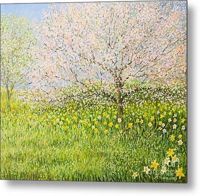 Springtime Impression Metal Print by Kiril Stanchev