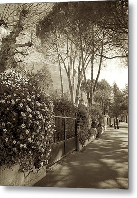 Springtime In Montreux Metal Print by Colleen Williams