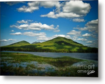 Metal Print featuring the photograph Springtime In The Bigelow Mountains by Alana Ranney