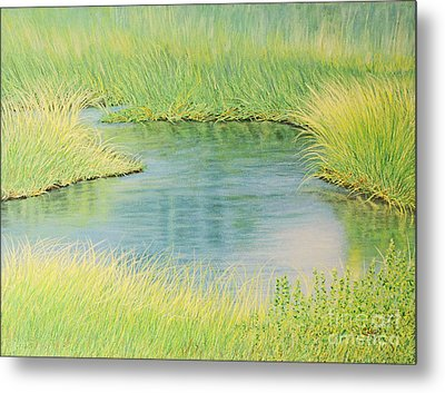 Springtime Marsh-new Beginnings Metal Print