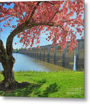 Springtime On The River Metal Print