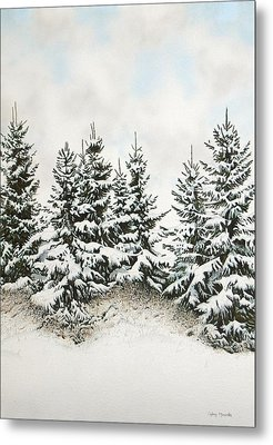 Spruce-trees In Winter Metal Print by Conrad Mieschke