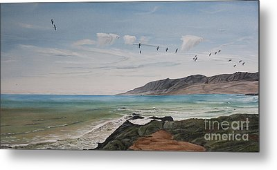 Squadron Of Pelicans Central Califonia Metal Print
