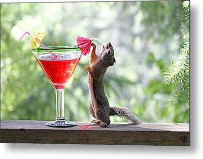 Squirrel At Cocktail Hour Metal Print