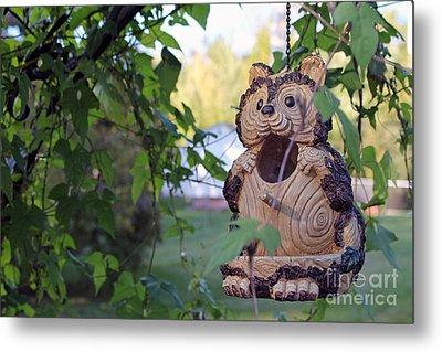 Squirrel Bird Feeder Metal Print