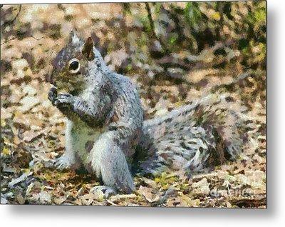 Squirrel In Central Park Metal Print by George Atsametakis