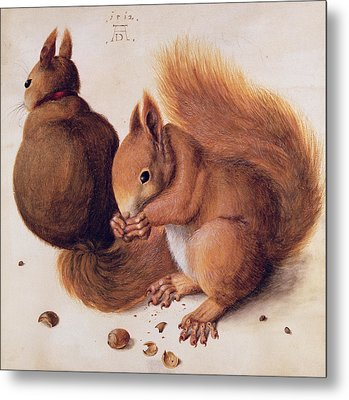 Squirrels Metal Print by Albrecht Duerer