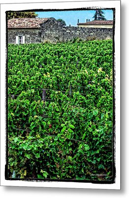 Metal Print featuring the photograph St. Emilion Winery by Joan  Minchak