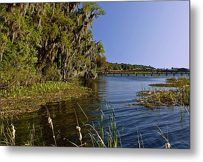 St Johns River Florida Metal Print by Christine Till