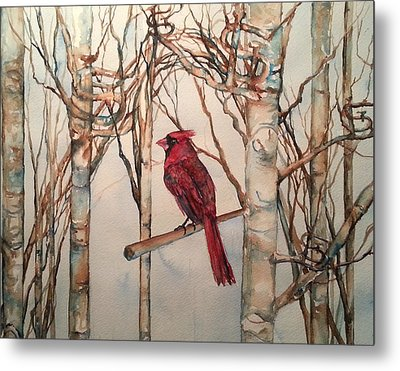 St Louis Cardinal Redbird Metal Print by Christy  Freeman