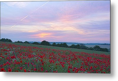St Margarets Poppies Metal Print