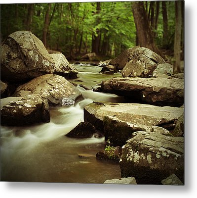 St. Peters Stream Metal Print by Michael Porchik