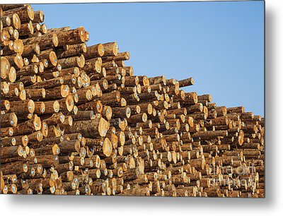Stacks Of Logs Metal Print