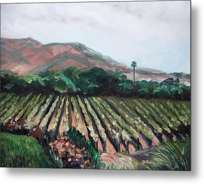 Stag's Leap Vineyard Metal Print by Donna Tuten