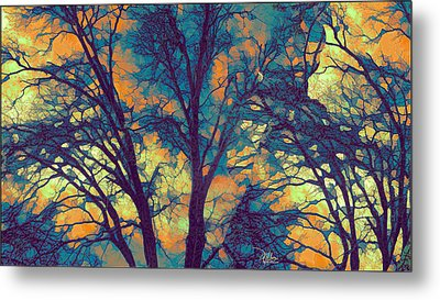 Stained Glass Forest No. 6 Metal Print by Douglas MooreZart