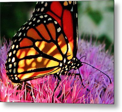 Stained Glass Monarch  Metal Print by Chris Berry