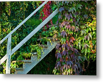 Stairs2 Metal Print by Michele Wright