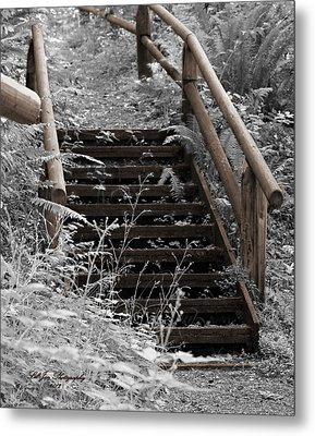 Metal Print featuring the photograph Stairway Home by Jeanette C Landstrom