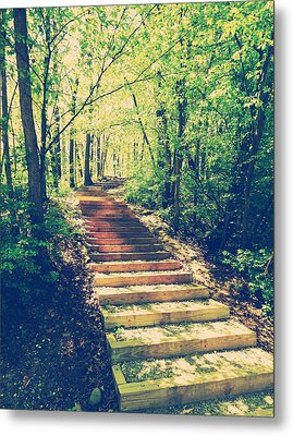 Stairway Into The Forest Metal Print by Phil Perkins