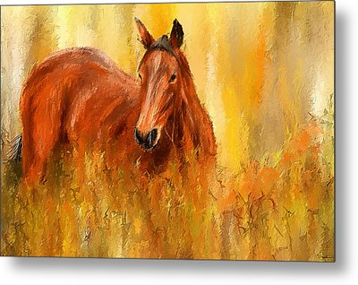 Stallion In Autumn - Bay Horse Paintings Metal Print by Lourry Legarde