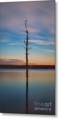 Stand Alone 16x9 Crop Metal Print