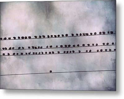 Stand Out From The Crowd Metal Print by Jai Johnson