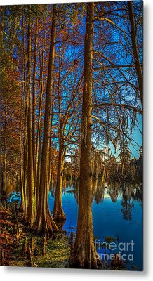 Stand Tall Metal Print by Marvin Spates