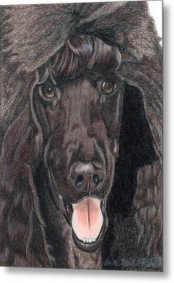 Standard Poodle Vignette Metal Print