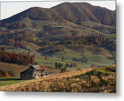 Metal Print featuring the photograph Standing Alone by David Lester