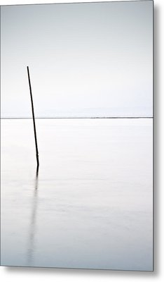 Standing Alone Metal Print by Jorge Maia