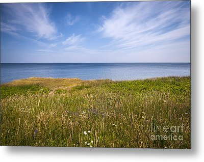 Standing On Cliff Edge Metal Print by Elena Elisseeva