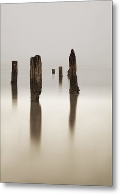 Standing Still Metal Print by Mark Alder