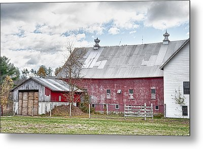 Stands With Dignity Metal Print by Richard Bean