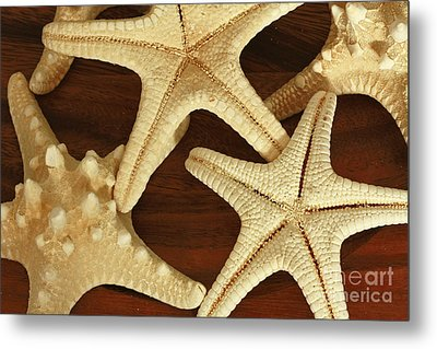 Star Fish Metal Print by Inspired Nature Photography Fine Art Photography