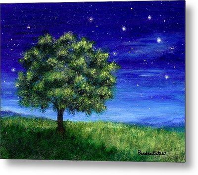 Metal Print featuring the painting Star Gazing by Sandra Estes
