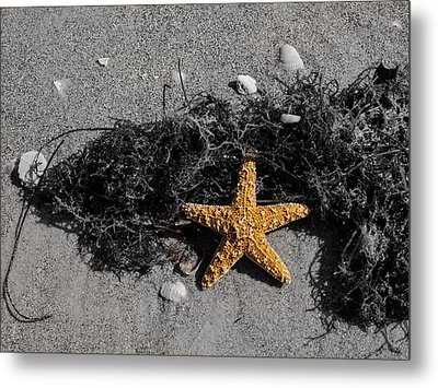 Metal Print featuring the photograph Star Man by Randy Sylvia