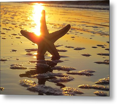 Starfish And Bubbles Metal Print by Nikki McInnes
