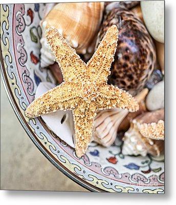 Starfish And Seashells Metal Print by Edward Fielding