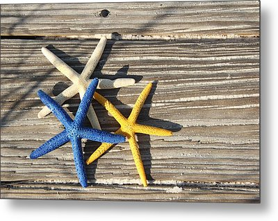 Metal Print featuring the photograph Starfish by Elizabeth Budd