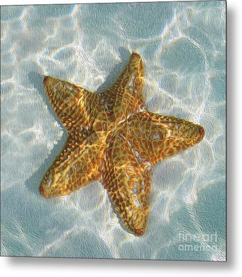 Starfish Metal Print by Jon Neidert