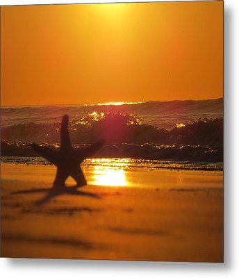 Metal Print featuring the photograph Starfish Sunrise by Nikki McInnes
