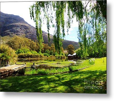Stark Conde Wine Estate Stellenbosch South Africa Metal Print