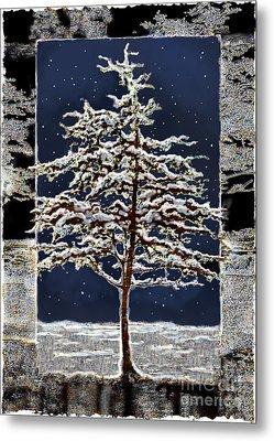 Starlight Metal Print by Ursula Freer