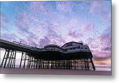 Starling Flock Over Blackpool North Pier Metal Print by Simon Booth