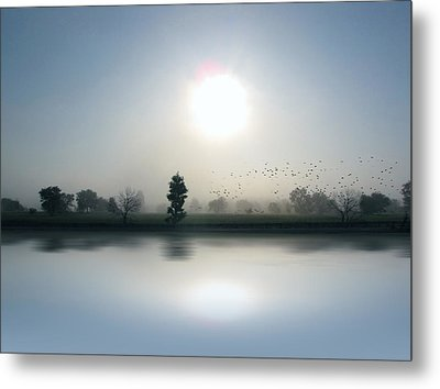Starlings Misty Morning - Limited Edition Metal Print
